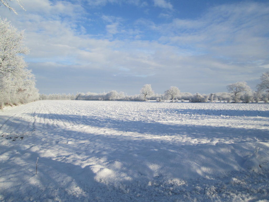 ... und im Winter