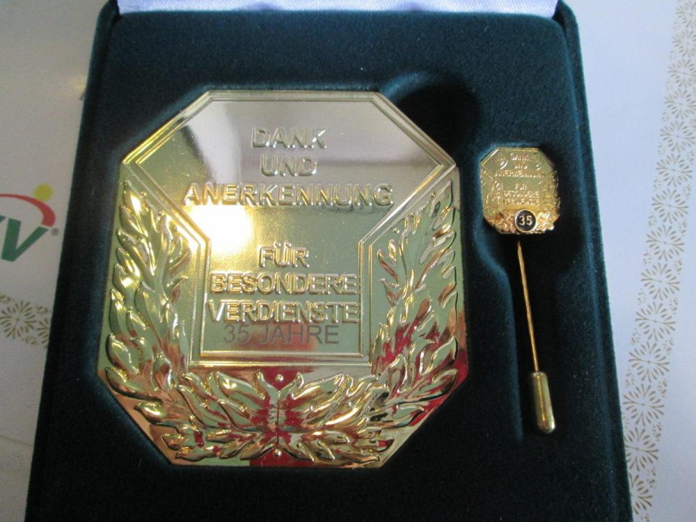 Medaille und Nadel