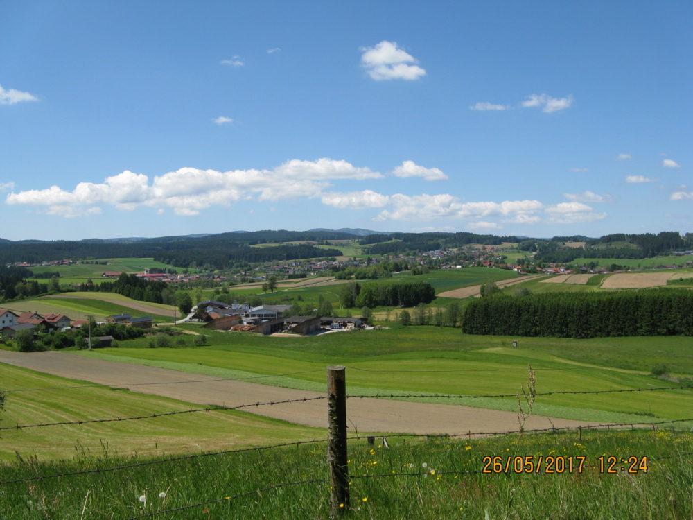 Blick vom Permanenten Wanderweg Rinchnach